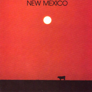 New Mexico I